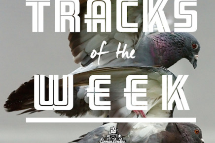 "POP / R&B ""TRACKS OF THE WEEK"""