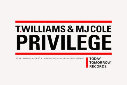 T.Williams & MJ Cole – Privilege