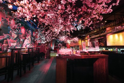 Sakura at ROKA with Suntory Whisky