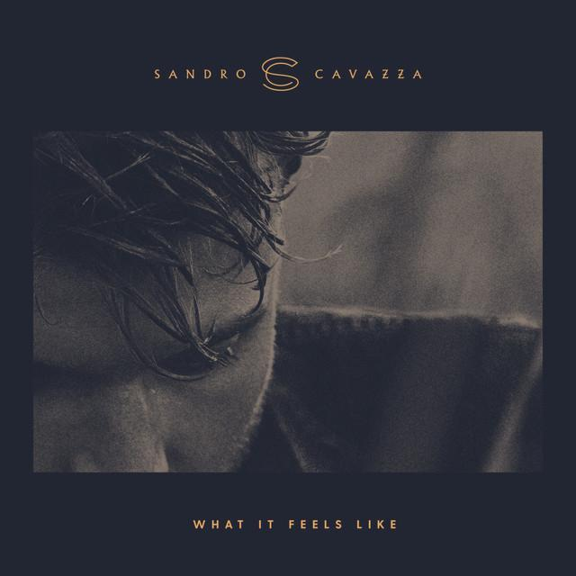 Sandro Cavazza - What It Feels Like
